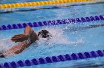 Becken- und Freiwasserschwimmen
